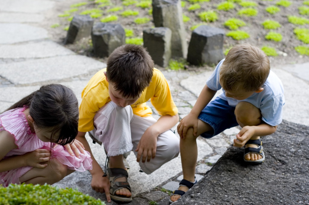 Children studying something on the ground in a garden.